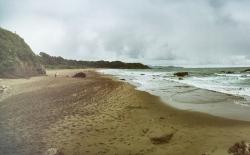Surfer beach Futami