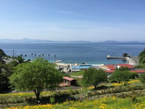 Camping Ground West Coast Shikoku - Japanese skills recommended
