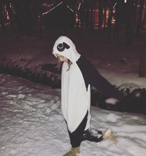 Snow panda